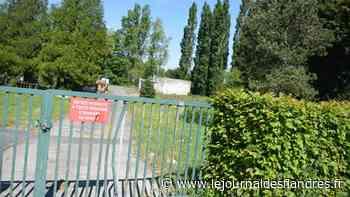 Wormhout : une niche écologique à l'ancienne station d'épuration ? - Le Journal des Flandres