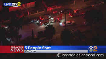 5 People In Critical Condition After Shooting In South LA