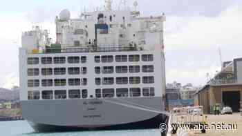 Coronavirus outbreak on Al Kuwait live export ship led to 'errors all around', WA Premier admits - ABC News