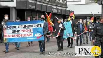 Die AfD demonstriert in Peine für das Grundgesetz - Peiner Nachrichten