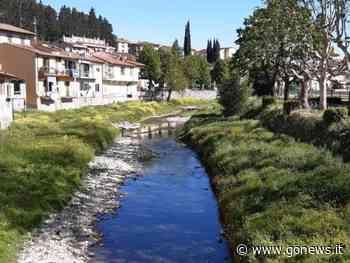 Sfalci lungo Arno e affluenti tra Firenze, Prato e Pistoia - gonews