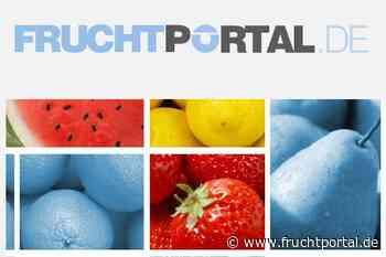 Video Deutsches Obst und Gemüse: Feldsalat, Kresse und Babyspinat aus Lorch - fruchtportal.de
