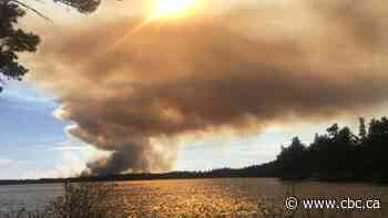 2nd forest fire in Miramichi area being fought near Blackville - CBC.ca