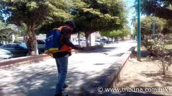 En Huatabampo buscan no ceder ante el coronavirus y sanitizan espacios públicos - TRIBUNA