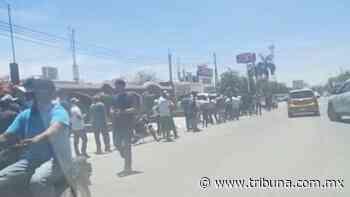 Protección Civil supervisará la venta de cerveza en comercios de Huatabampo - TRIBUNA