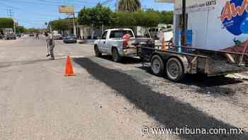 En Huatabampo reanudan el programa de bacheo en la zona urbana - TRIBUNA