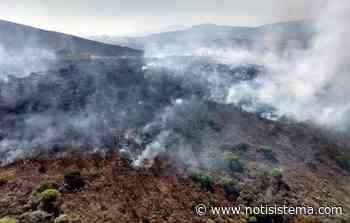Combaten fuerte incendio en el cerro de Totoltepec - Notisistema