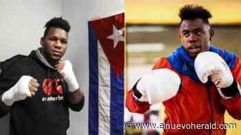 Boxeadores cubanos quieren golpear fuerte el 10 de julio en México. ¿Quiénes son estas promesas? - El Nuevo Herald