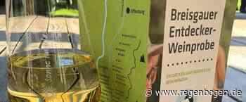 Weinland Breisgau lädt zur Entdecker-Weinprobe - Regenbogen