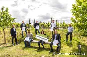 Langenloiser Weinchampion: Langenlois kürte die besten Weine - meinbezirk.at