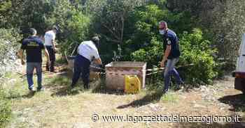 Ostuni, volontari scoprono amianto nascosto in campagna - La Gazzetta del Mezzogiorno