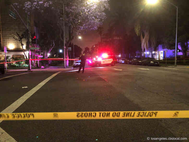 Innocent Pedestrian, Dog Struck And Killed By Pursuit Suspect During Long Beach Chase