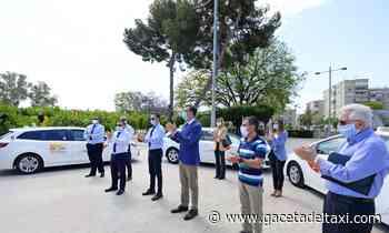 El taxi de Murcia recogerá comida para el Banco de Alimentos - La Gaceta del Taxi