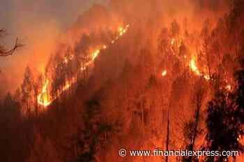 Uttarkhand wildfire: Sporadic forest fires trigger trending hashtag on social media