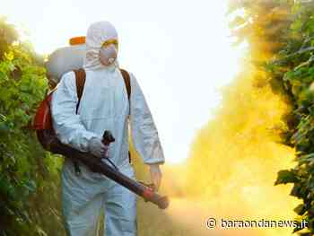 Cerveteri, al via la disinfestazione contro gli insetti presso i cimiteri - BaraondaNews