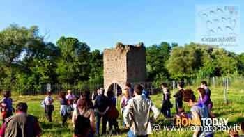 Il Parco della Caffarella: escursione archeologica guidata