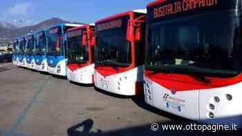 """Abbonamenti Busitalia, Gallo: """"Scadenze da posticipare"""" - Ottopagine"""