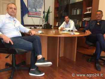 Centrodestra, iniziative comuni a Salerno e in provincia - Agro24
