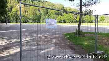 Oberndorf a. N.: Corona-Krise: Autokino startet auf Elefanten-Parkplatz - Oberndorf a. N. - Schwarzwälder Bote