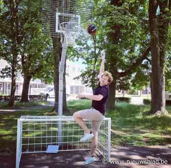 Diverse basketpalen vernieuwd