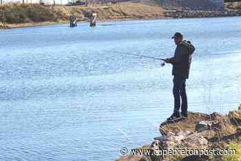 Fishing and flying in Westmount - Cape Breton Post