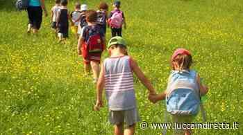Capannori, pubblicato l'avviso per i centri estivi - Luccaindiretta - LuccaInDiretta