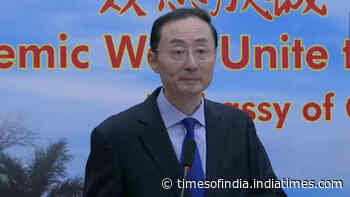 We should never let differences overshadow our relations: Chinese envoy