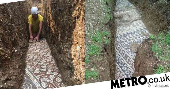 Perfectly preserved Roman mosaic discovered under Italian vineyard