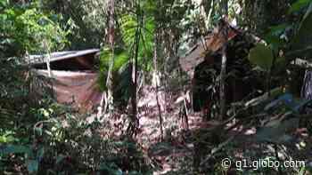 Polícia Ambiental encontra acampamento na Serra do Mar, em Biritiba Mirim, e suspeita que estrutura serviria para extrair palmito - G1