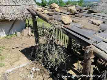Poggibonsi, vandali al parco archeologico - Qui News Valdelsa