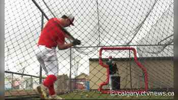 Back on the field: Okotoks Dawgs Academy gets green light to resume baseball practice - CTV News