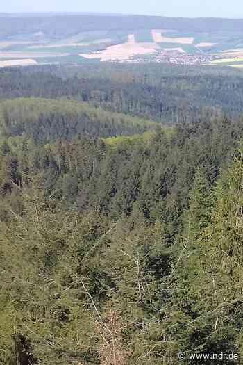 Holzminden bekommt neues Landschaftsschutzgebiet - NDR.de