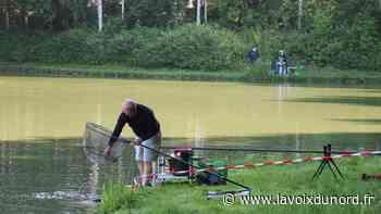 Wattrelos: les pêcheurs sont de retour à l'étang Verbrugghe - La Voix du Nord