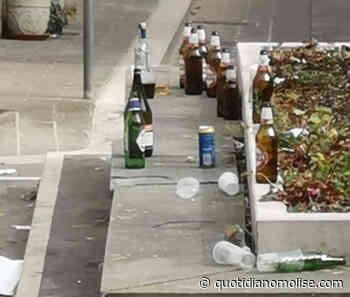 Movida a Isernia, ogni domenica mattina pulizia straordinaria del centro storico - Il Quotidiano del Molse