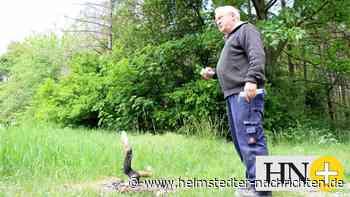 Trotz Waldbrandgefahr: Feuerstelle direkt am Elm - Helmstedter Nachrichten