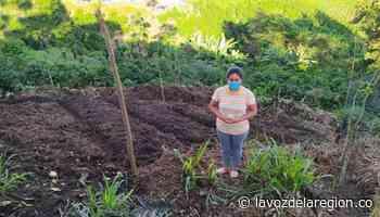Implementan proyecto de seguridad alimentaria en Oporapa - Noticias