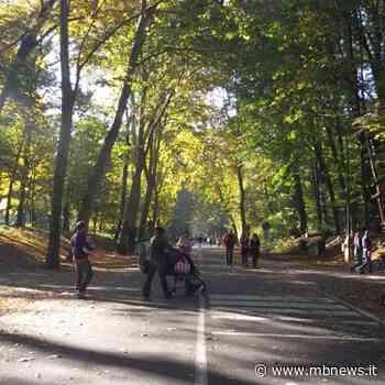 Parco, viale Cavriga resta chiuso. La svolta green del Comune di Monza - MBnews