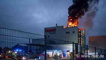 Schaden in Millionenhöhe: Brand in Tierfutterfabrik Ospelt in Apolda - MDR