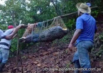 Encuentran sin vida a un hombre en San José de Cañazas en Veraguas - Panamá América