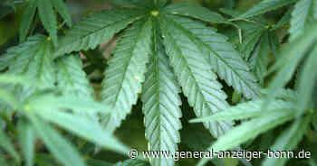 Siegburg: Bundespolizei nimmt Cannabis-Dealer am Bahnhof fest - General-Anzeiger