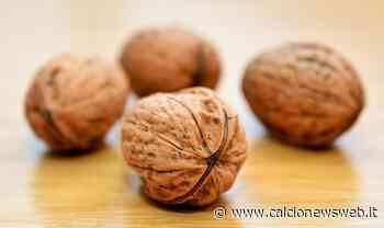 Attenzione a mangiare noci ammuffite: ecco cosa accade - Calcionewsweb