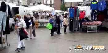 Canosa di Puglia, mercato a 5stelle. Associazioni di categoria soddisfatte. - Trani News