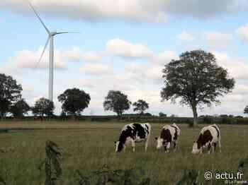 Près de Vallet, le projet d'éoliennes de nouveau devant la justice - actu.fr