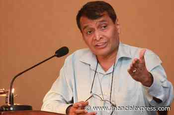 Need to look at building economy with local skills: Suresh Prabhu