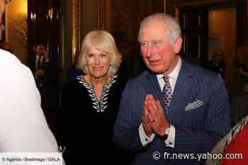 Le prince Charles piqué au vif par les propos d'un proche de Meghan Markle sur Harry - Yahoo Actualités