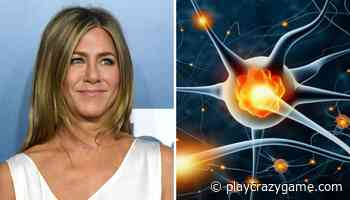 The human brain has a type of neuron called Jennifer Aniston, and science explains the reason - Play Crazy Game