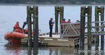 Body recovered near West Vancouver's Ambleside Park - Globalnews.ca