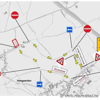 Volgende week asfalt voor De Blok in Hauthem