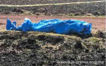 Abandonan cuerpos en camino de Penjamo, Guanajuato - La Prensa