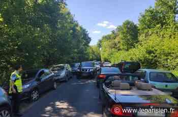Dans la forêt de Fontainebleau, «on n'a jamais vu autant de monde» - Le Parisien
